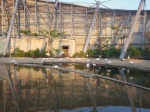 Soirée Silent Zoo : Silent Walk - Visite Nocturne et en Musique du Zoo de Paris - La Grande Volière