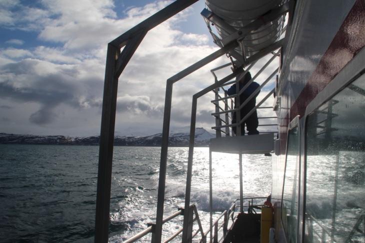 Islande - Excursion en bateau pour voir les orques