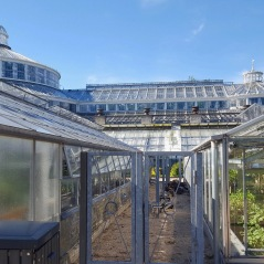 Visite incontournable à Copenhague - Jardin Botanique et son Parc