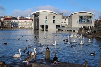Lac de l'hôtel de ville à Reykjavik en Islande